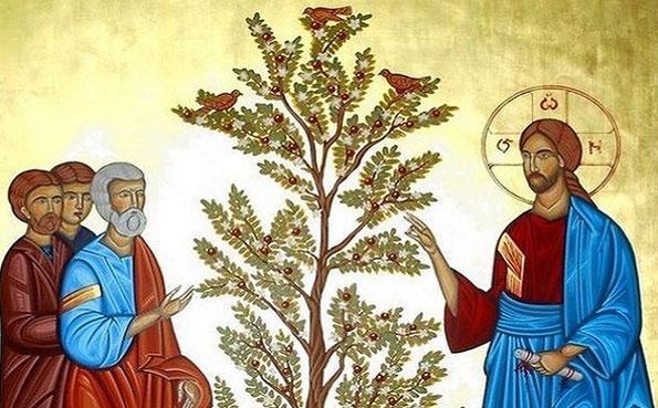 2019 10 06 Isus govori o zrnu gorušičinu